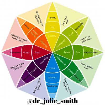 Life Skills: Understanding Emotions